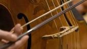 vista previa del artículo Joven cellista vallisoletana premiada