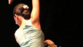 vista previa del artículo El Flamenco de fiesta en Mayorga