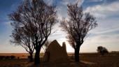 vista previa del artículo Ceinos de Campos, paisajes de llanura