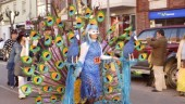 vista previa del artículo Carnaval en Valladoli 2011