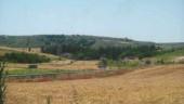 vista previa del artículo Molpeceres, cerca de Peñafiel
