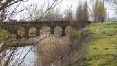 vista previa del artículo Senderismo por la Ribera del río Valderaduey: de Santervás hasta Vega de Ruiponce