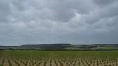 vista previa del artículo Quintanilla de Onésimo, un pueblo para quedarse