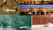 vista previa del artículo Museos y teatros en la Tierra de Campos