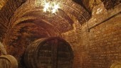 vista previa del artículo Enoturismo en Valladolid con el Bus Vino