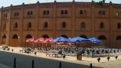 vista previa del artículo El Museo del Toro de Valladolid ofrece actividades adicionales