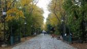 vista previa del artículo Conocer los mejores atractivos de Valladolid
